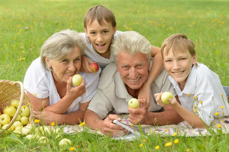 Family having picnic. Happy family having a picnic on a sunny summer day stock images