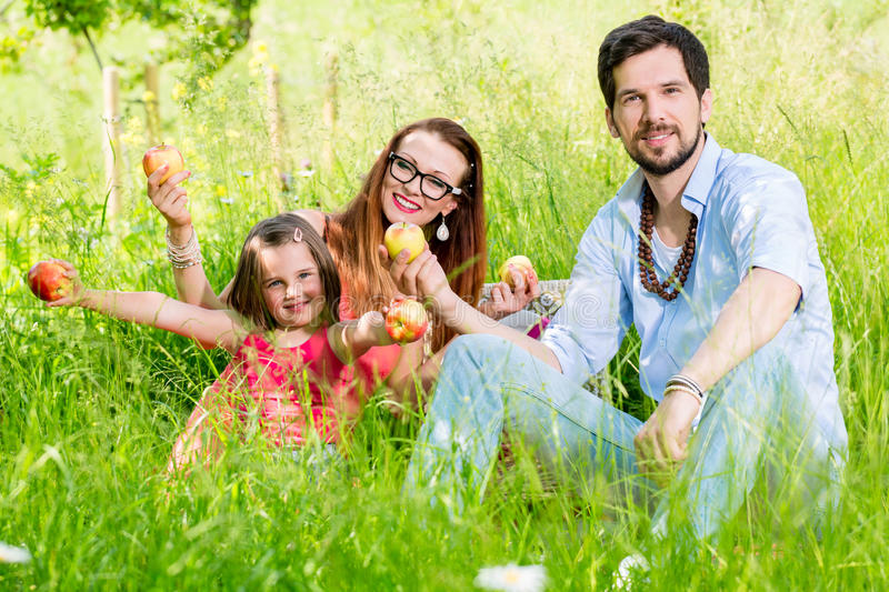 Family having picnic on meadow with healthy fruit royalty free stock image