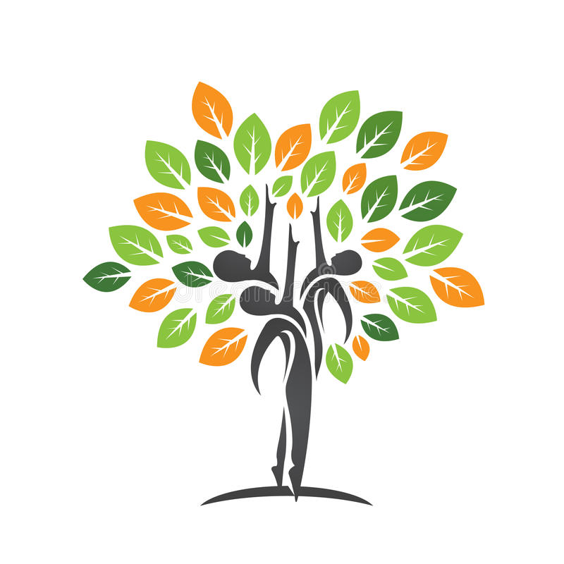 Family Health Tree Leaf Icon Stock Illustration Illustration Of