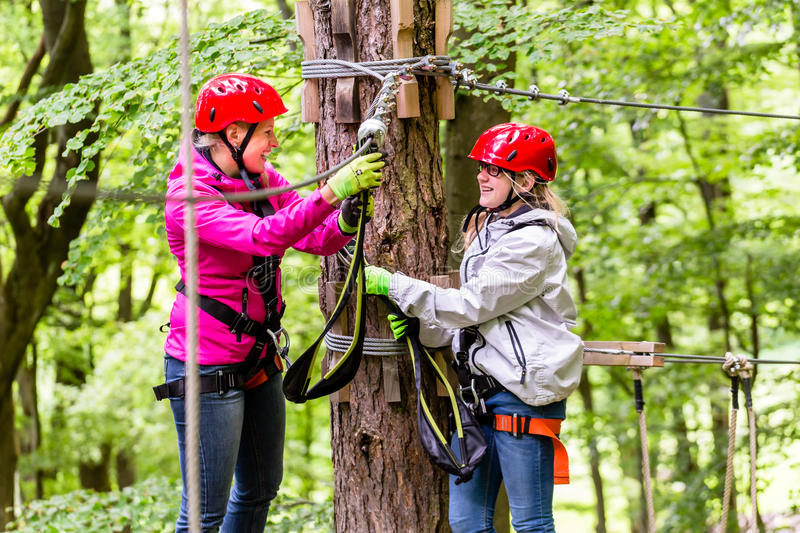 Family in high rope course or park climbing stock photography