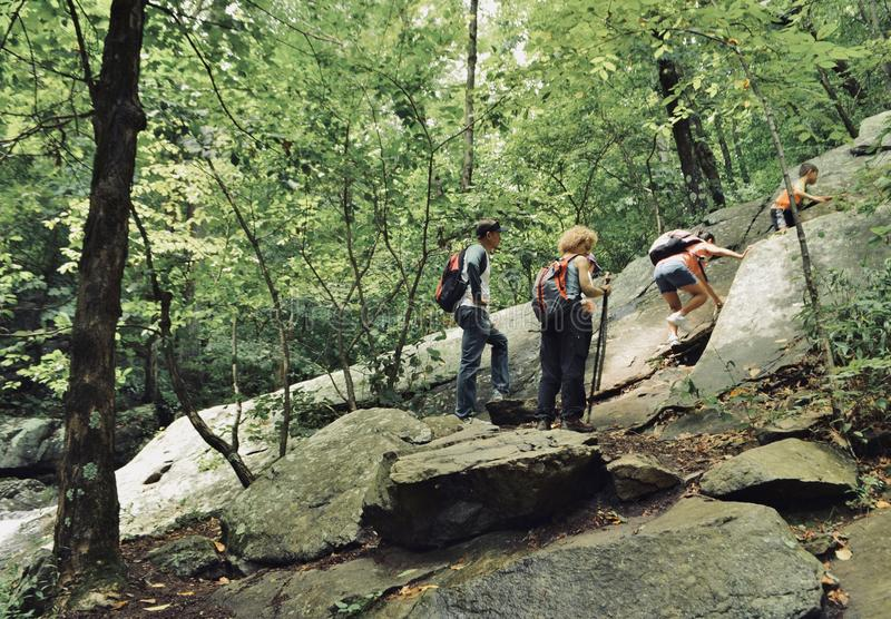 Family Hiking in the Park royalty free stock images