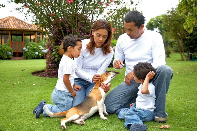 Download Family at home stock image. Image of home, father, grass - 6626541