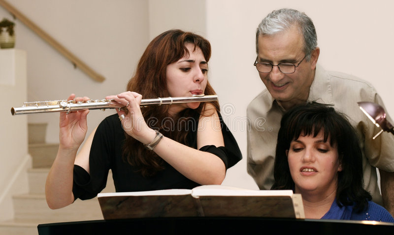 Download Family home concert stock image. Image of friend, classical - 735659
