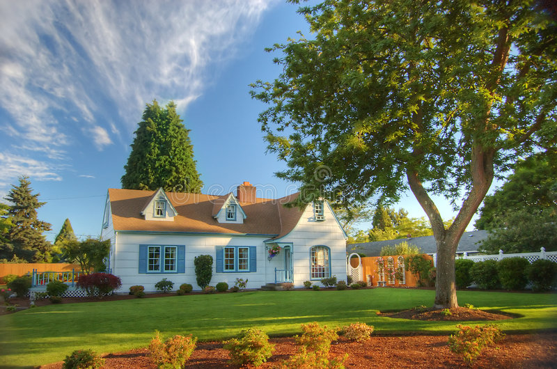 Download Family home with tree stock photo. Image of green, trees - 5537298
