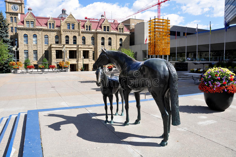 Family of Horses, in Municipal Plaza stock images