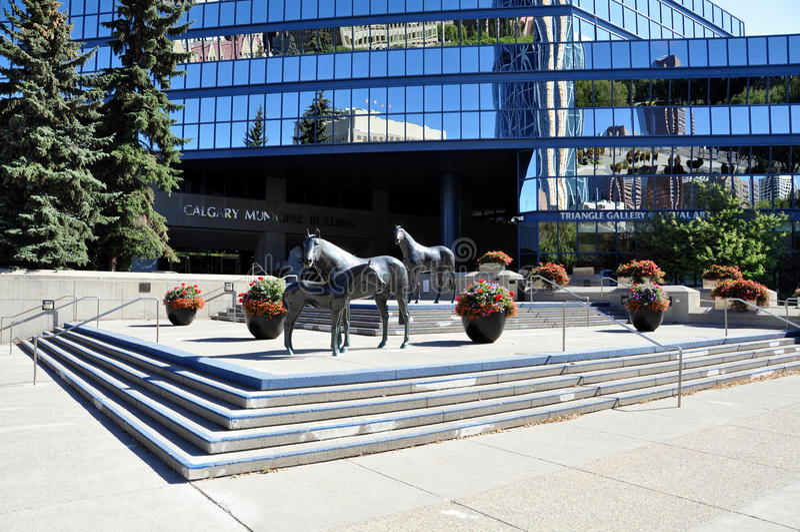 Family of Horses, in Municipal Plaza royalty free stock photo