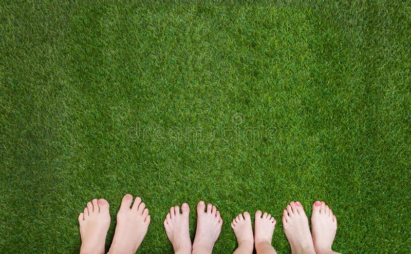 Family legs standing together on green grass stock photography