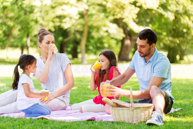 Family drinking juice on picnic at summer park royalty free stock images
