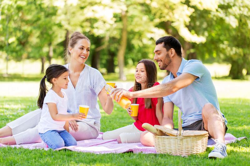 Family drinking juice on picnic at summer park royalty free stock photos