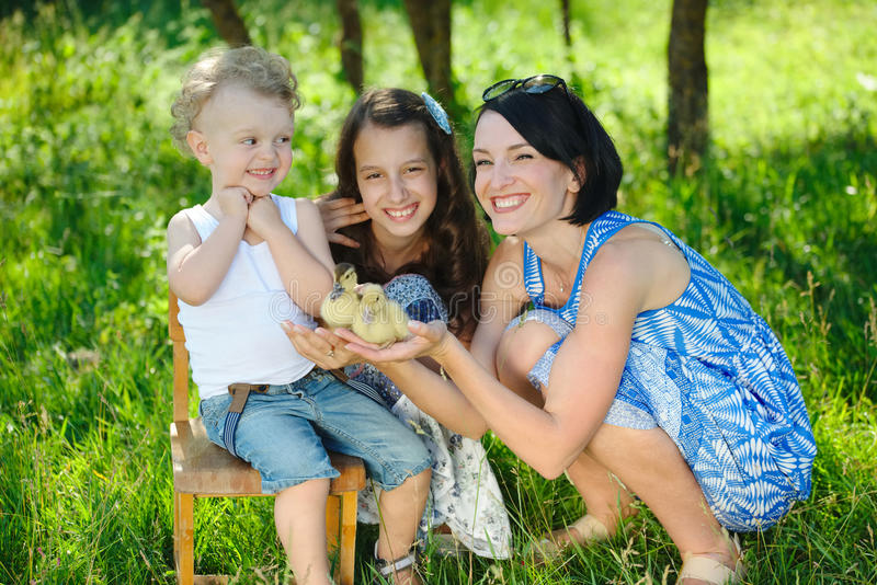 Family with little yellow duckling in summer Park stock photo