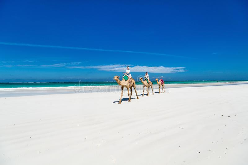 Mother and kids at tropical beach. Family mother and kids riding camels at tropical white sand beach stock photography