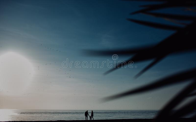Family with one child stands against sunset sea beach and palms. Tropical vacations concept. silhouette. Family with one child stands against sunset sea beach stock photos