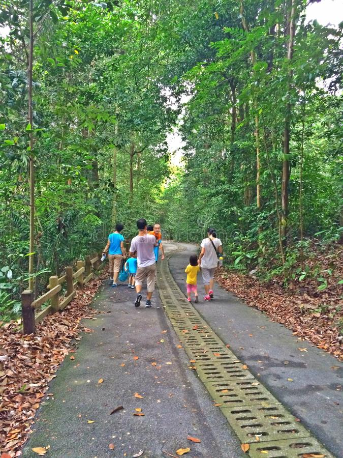 Family outing at Bukit Timah nature reserve, Singapore stock images