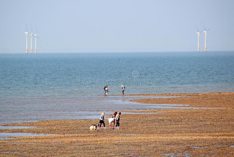 Family outing by sea stock photography