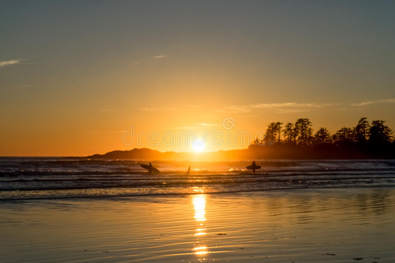 Family Outing. Family Surfing at Chesterman Beach near Tofino, British Columbia royalty free stock photo