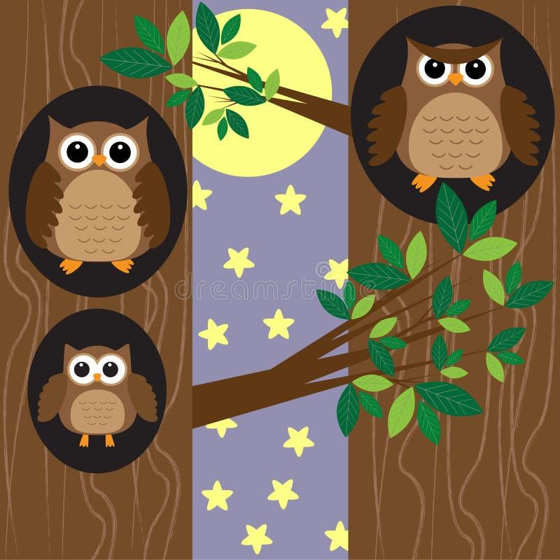 Family owls at night