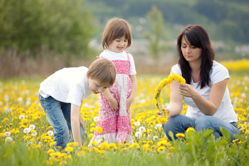 Download Family picking flowers stock image. Image of blonde, dandelions - 24820633