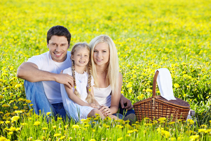 Download Family Picnic stock image. Image of holiday, beautiful - 19866489