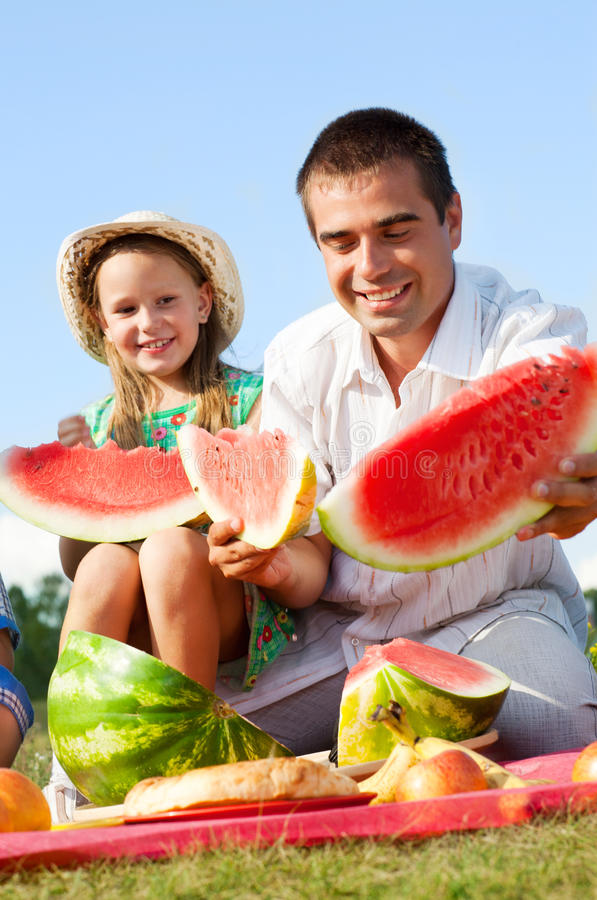 Download Family picnic stock photo. Image of lifestyle, fruit - 24553686