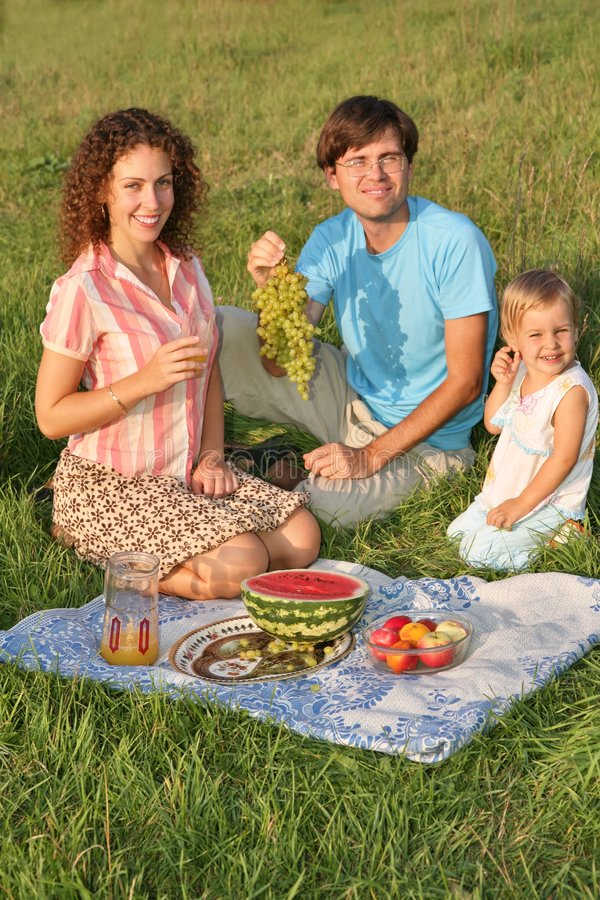 Family on picnic royalty free stock photos