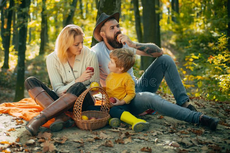 Family picnic. Lovely family on picnic feeds little son with apples without pesticides. Healthy eating habits stock photography