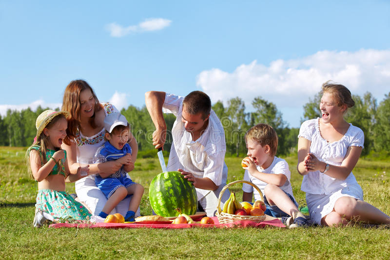 Family picnic in park royalty free stock image