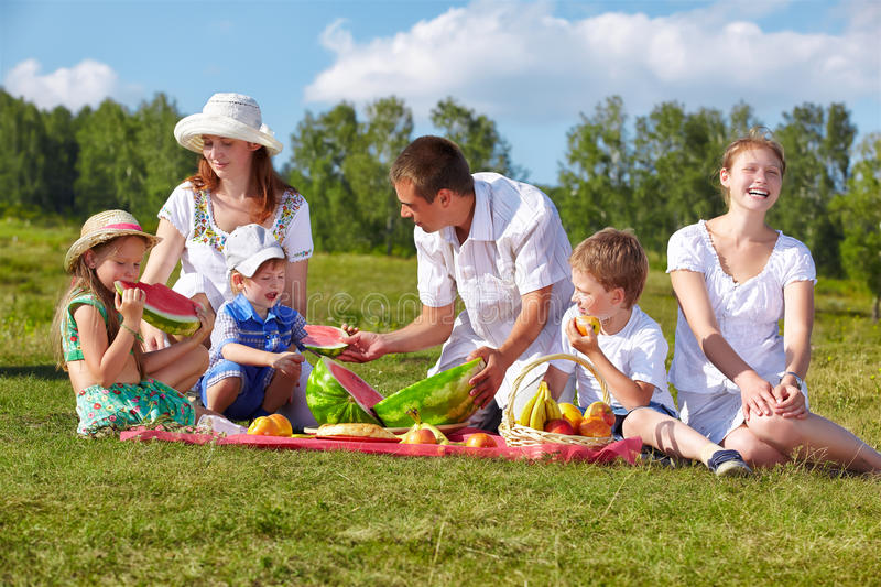Family picnic in park stock images