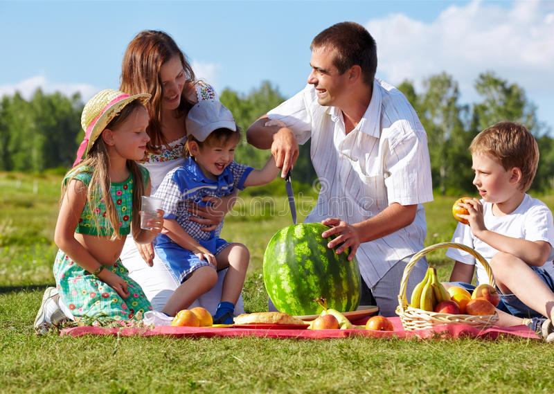 Family picnic in park stock photography