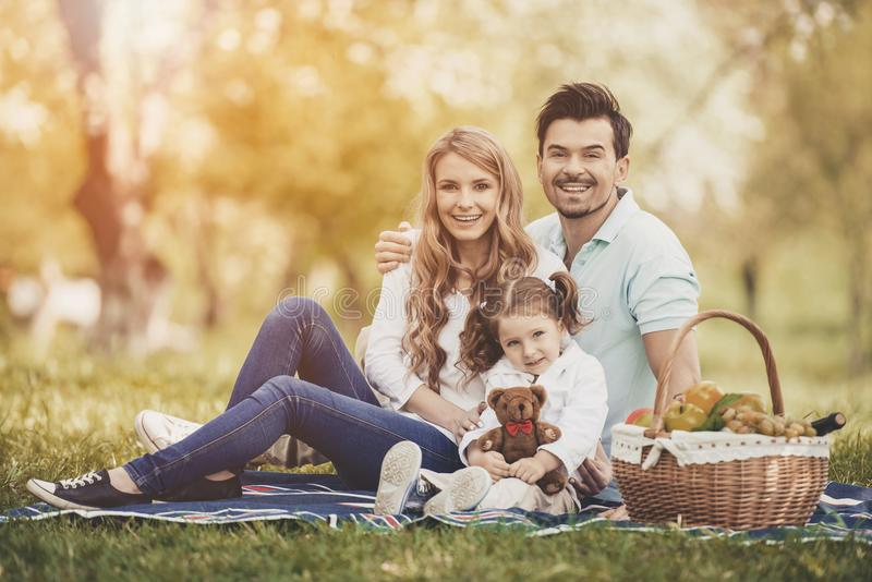 Family on Picnic in Park on Sunny Summer Day. royalty free stock photos