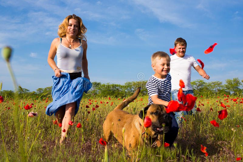Family on the poppy meadow stock photo