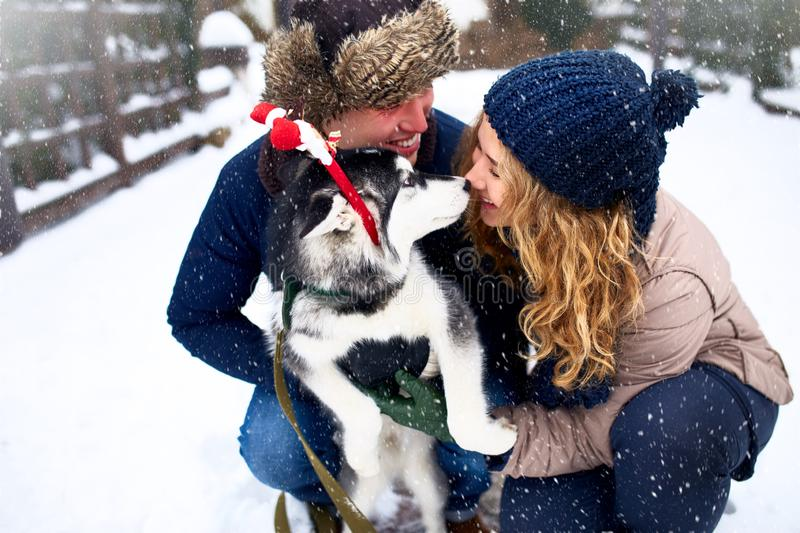 Family portrait of cute happy couple hugging with their alaskan malamute dog licking man`s face. Funny puppy wearing. Santa christmas dear antlers. Freedom stock photo