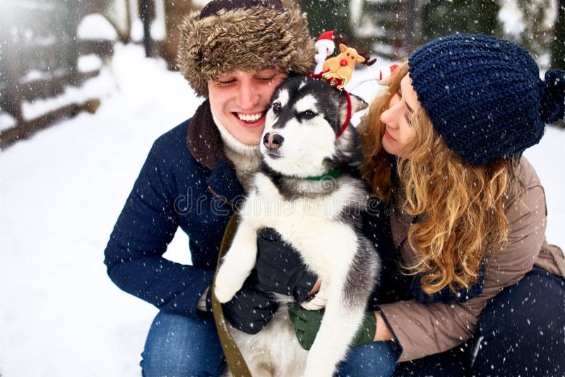 Family portrait of cute happy couple hugging with their alaskan malamute dog licking man`s face. Funny puppy wearing. Santa christmas dear antlers. Freedom stock images