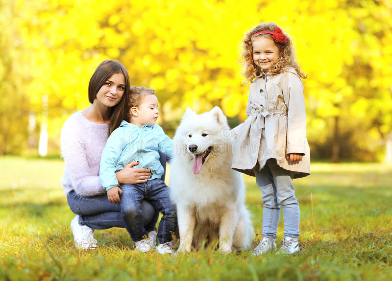 Family portrait, pretty young mother and children walks with dog stock photography