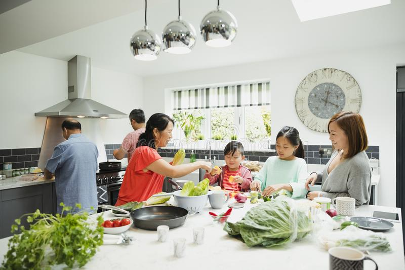Family Preparing a Stir Fry Together royalty free stock images