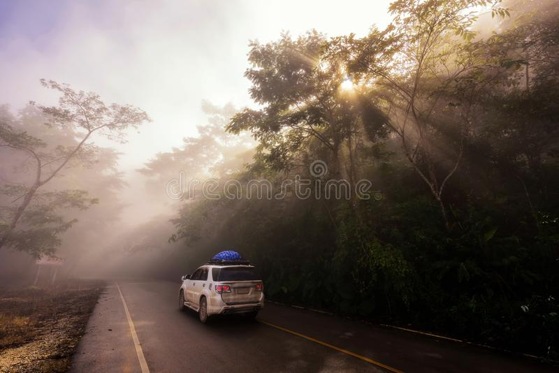 Family road trip by SUV car. SUV pickup car vehicle driving uphill at scenic local street with mist, sun rays light, and beautiful green forest. Family road trip stock images