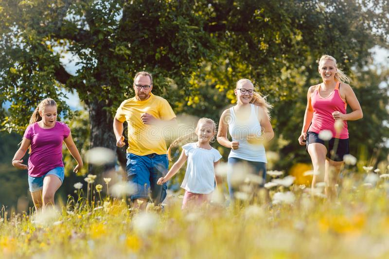 Family running on a meadow for sport. Family running on a meadow with flowers for sport royalty free stock images