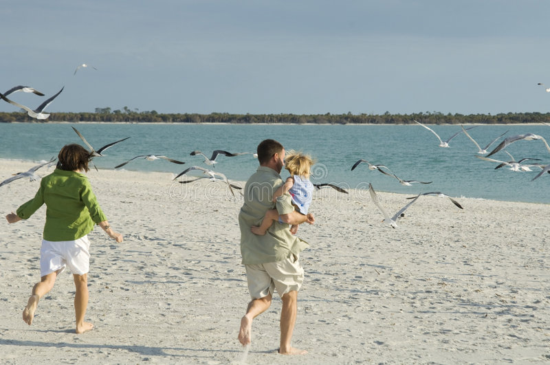Family running to beach stock photos