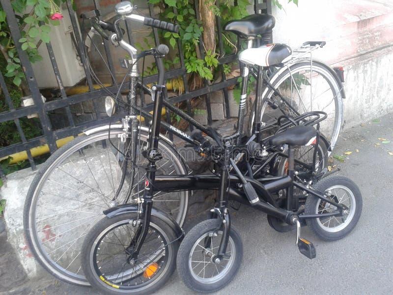 Family's bikes. 3 bikes of the family royalty free stock image
