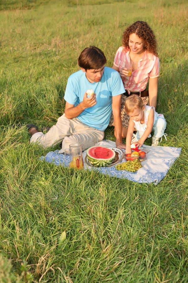 Family`s picnic stock photography