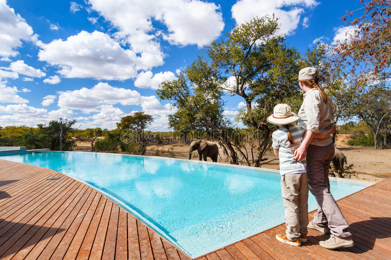 Family safari. Family of mother and child on African safari vacation enjoying wildlife viewing standing near swimming pool royalty free stock photography