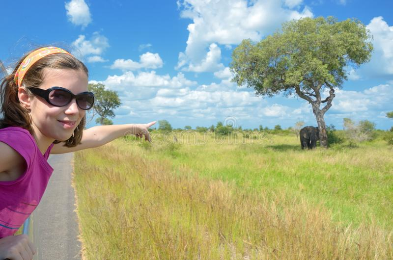 Family safari vacation in Africa, child in car watching elephant in african savannah, Kruger park wildlife. Family safari vacation in Africa, child in car royalty free stock photos