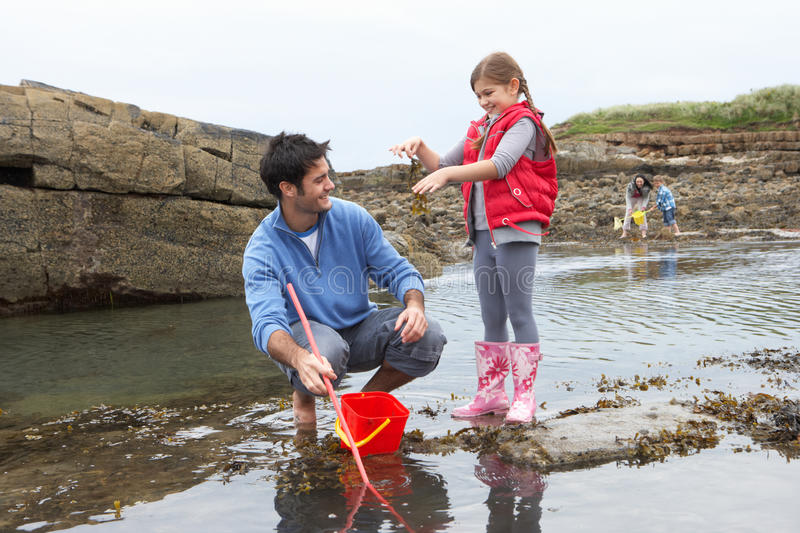 Download Family with seaweed stock photo. Image of barefoot, experiencing - 19418346