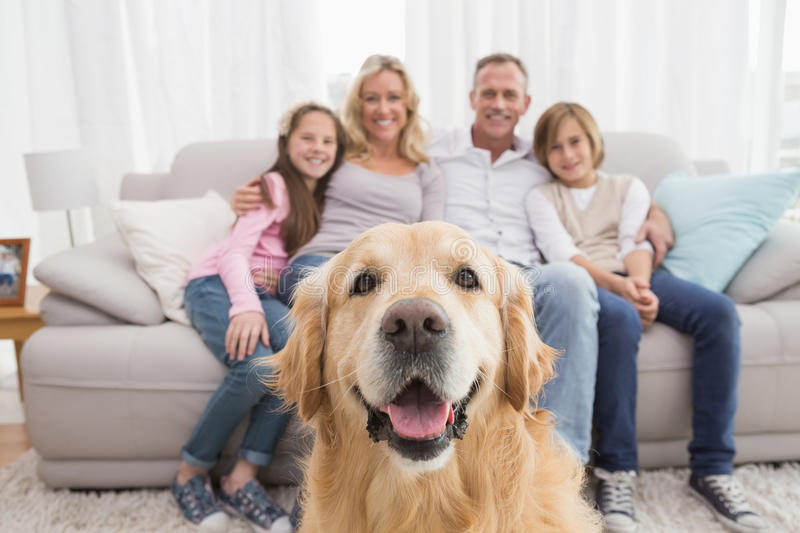 Family sitting on the couch with golden retriever in foreground royalty free stock image