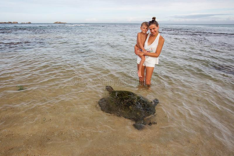 Family snorkeling with turtle at the tropical coast of Sri Lank royalty free stock photo