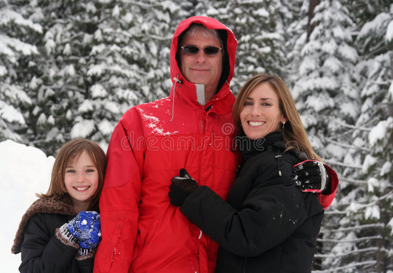 Download Family in the Snow stock photo. Image of winter, playing - 1776848