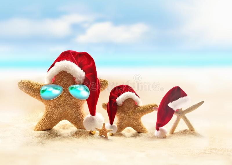 Family of starfish on summer beach and Santa hat. Merry Christmas.  stock photography