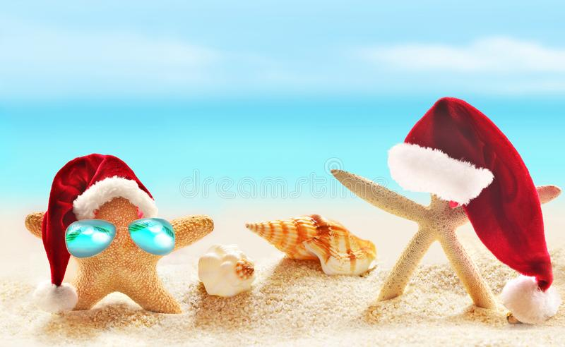 Family of starfish on summer beach and Santa hat. Merry Christmas royalty free stock image