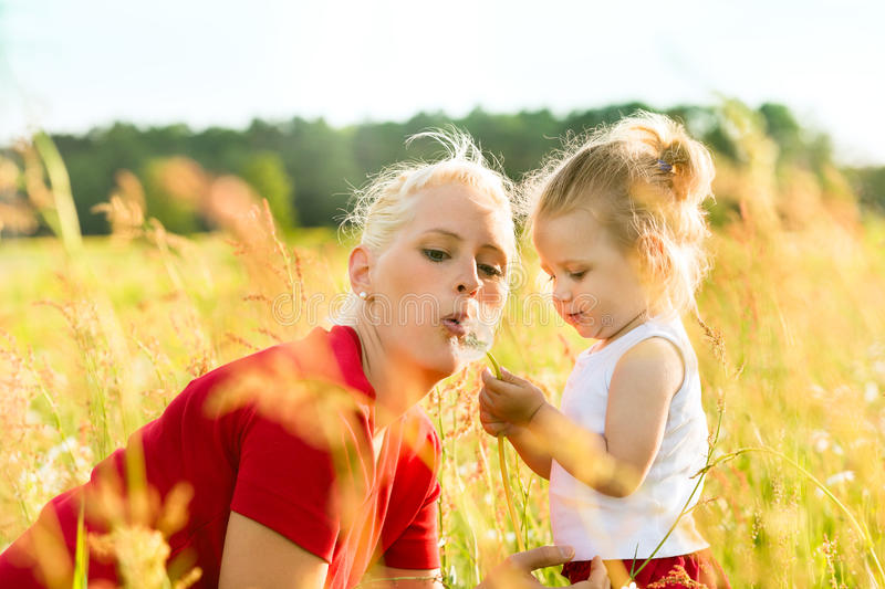 Download Family Summer - Blowing Dandelion Seeds Stock Image - Image: 26869081