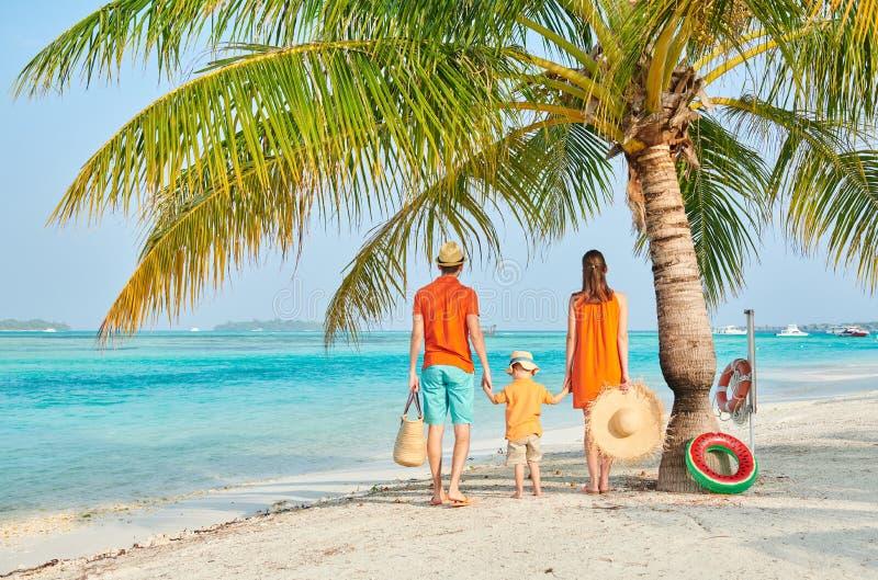 Family of three on beach under palm tree royalty free stock photo
