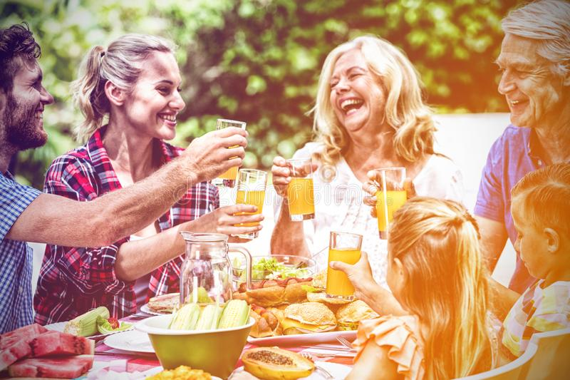 Family toasting drinks while having lunch at lawn stock photography